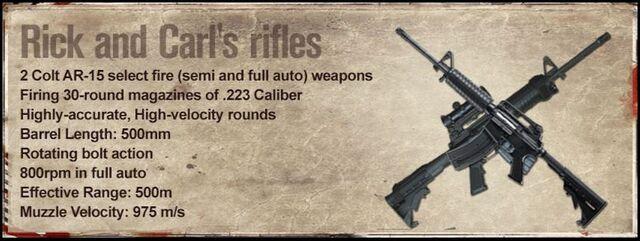 File:Rick and Carl's rifles.JPG