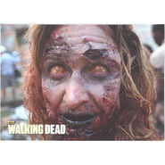 The Walking Dead - Sticker (Season 2) - S12