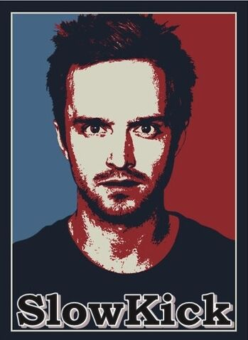 File:BREAKING BAD JESSE PINKMAN T SHIRT HEAT TRANSFER.jpg