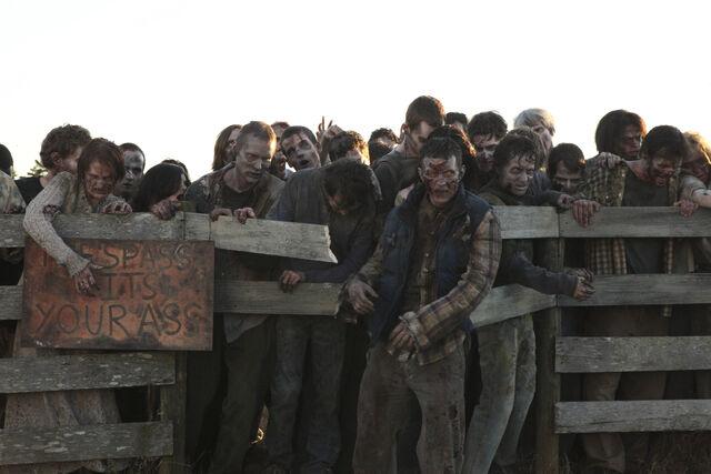 File:Episode-13-walkers-fence-2.jpg