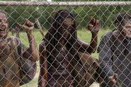 Michonne en la prision