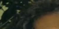Mrs. Magaña (Fear The Walking Dead)