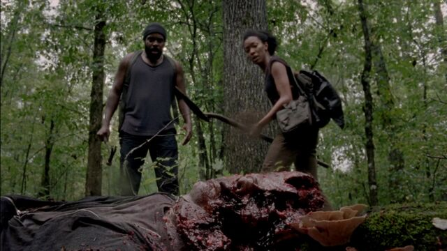 File:The Walking Dead S03E08 Made To Suffer 1080p 0081.jpg