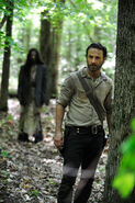 Walking-Dead-Season-4-Photo