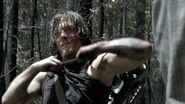 Daryl 606