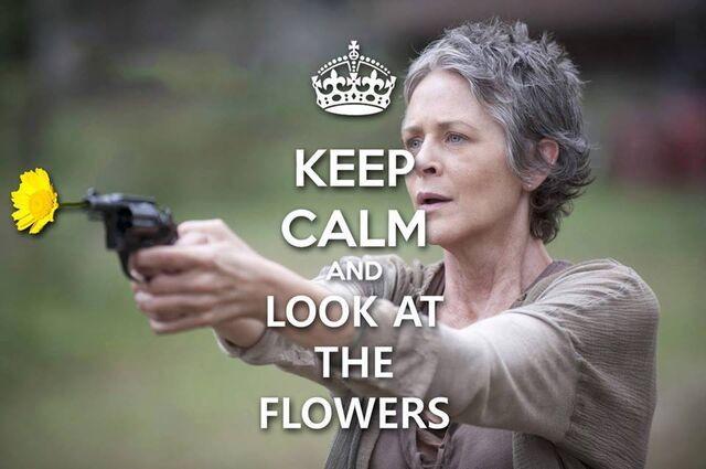 File:Look At The Flowers.jpg