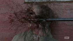 Crushed Walker