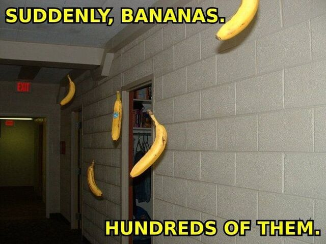 File:Suddenlybananas.jpg
