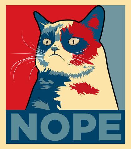 File:GrumpyNope.jpg