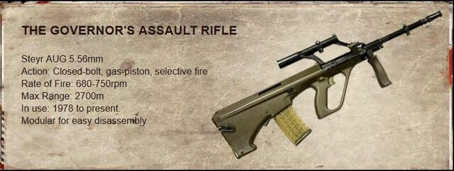 File:The Governor's Assault Rifle.JPG