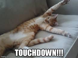 File:Touchdown!.jpg