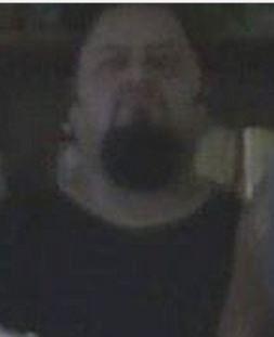 File:Bearded Vatos.JPG