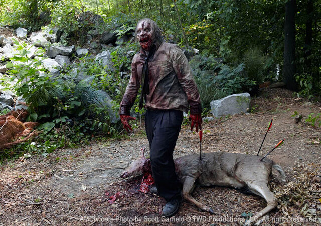 File:Walking-Dead-Zombie-Deer1.jpg