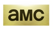 AMC 2013 logo