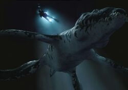 Liopleurodon Taucher BBC