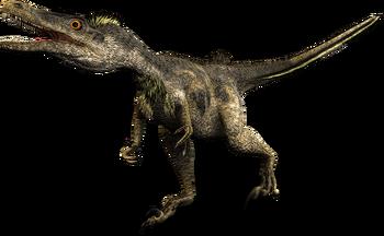 Dino Gallery