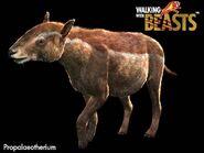 Propalaeotherium large