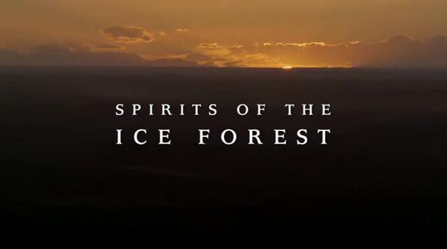 File:Spirits of the ice forest.jpg