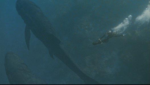 File:Leedsichthys.jpg