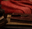Edgar Allan Poe's Quill Pen and Notebook