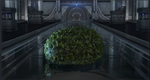 CBLarge Topiary Bush.png