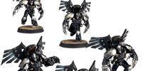 Dark Fury Assault Squad