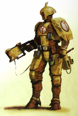 Combat armour