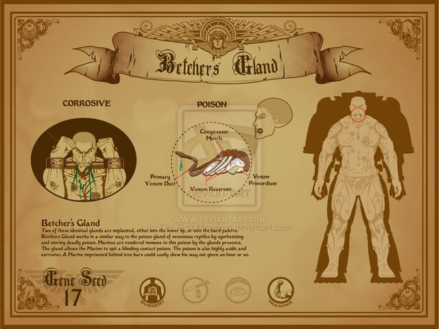 File:Space marine betcher s gland by the first magelord-d4be9qa.jpg