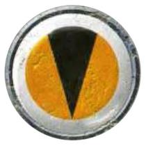 29th Zetic Tygers Icon