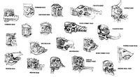 Various Titan Heads