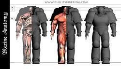 PhilipSibberingSpaceMarine size