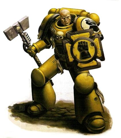 File:Imperial Fists Veteran Brother.jpg