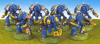 Knight Paladins