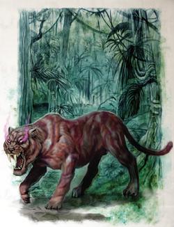 A Phyrr Cat