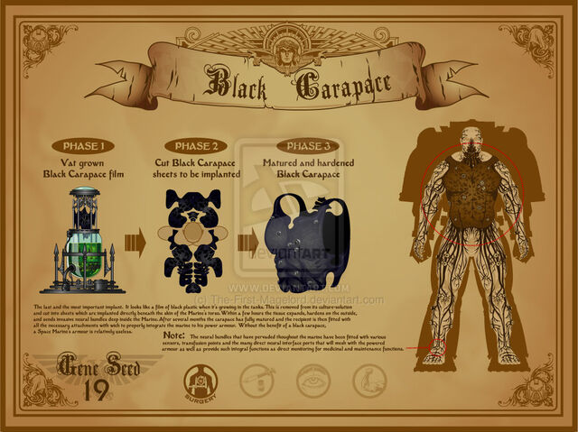 File:Space marine black carapace by the first magelord-d4be8o4.jpg