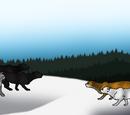 The Battle of the Century (SummerClan vs. WinterClan III)