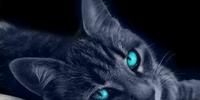 Sapphire (KP II)