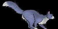 Cuckoofoot