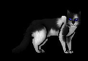 File:Wolfspirit.apprentice.png
