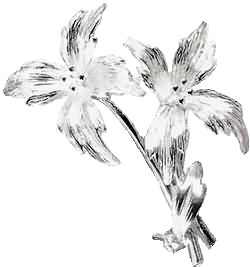 File:Silver flowers .png
