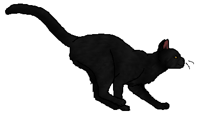 File:Blackfur.star.png