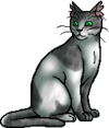 Ivypool.warrior.alt3