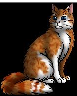Pouncetail (RC).warrior