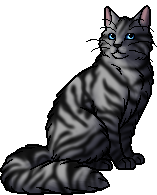 Silverstream.warrior