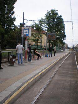 Plac Narutowicza (przystanek) 2.JPG