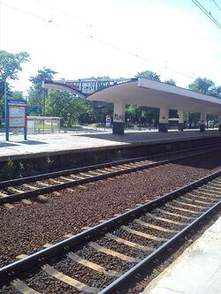 Falenica stacja.jpg