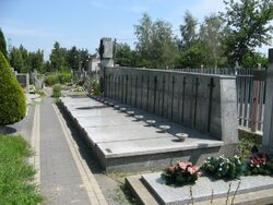 Cmentarz w Golabkach (1).jpg