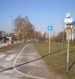 Aleja Rodowicza (ścieżka rowerowa).JPG
