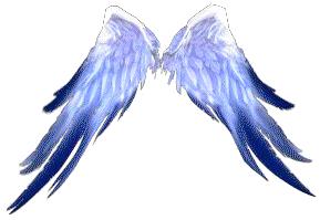 Blessed Angel Wings