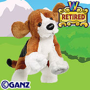 Preview beagle